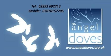 Angel Doves