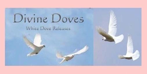 Divine Doves