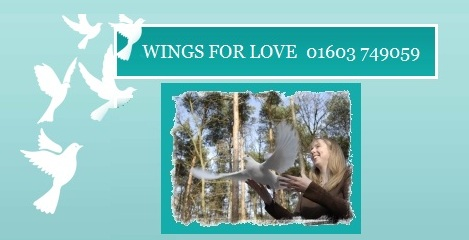 Wings For Love